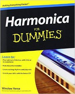 آموزش سازدهنی (هارمونیکا) دامیز