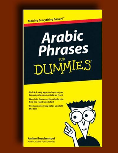 اصطلاحات عربی برای دامیز