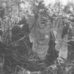 پنجمین و آخرین عکس از غکس های کاتینگلی، پری ها و حمام آفتابشان، 1920، عکسی که فرانسیس گریفیث اصرار داشت که واقعی است